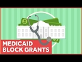 Trump, Congress, and the Plan for Block Grants and Medicaid