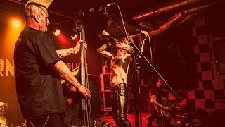 DEMENTED ARE GO - Hellbilly Storm - Zagreb - Tvornica kulture 16.03.2014