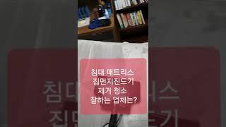 침대 매트리스 집먼지진드기 제거 청소 잘하는 업체? 조…