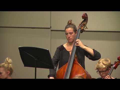 Sycamore High School: Fall Orchestra Concert 2017