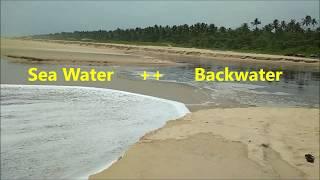 What is Backwater? Alleppey, Kerala