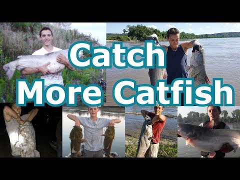 Top 5 Catfishing Tips, Tricks, Techniques For Bank Fishing Lakes And Rivers