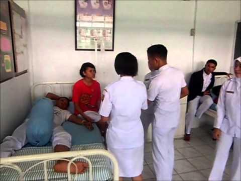 peran perawat profesional