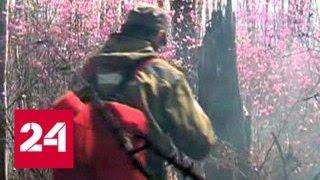 Смотреть видео Амурская и Хабаровская области продолжают гореть - Россия 24 онлайн