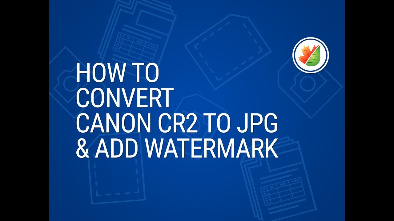 Convert CR2 to JPG with Image Converter Plus