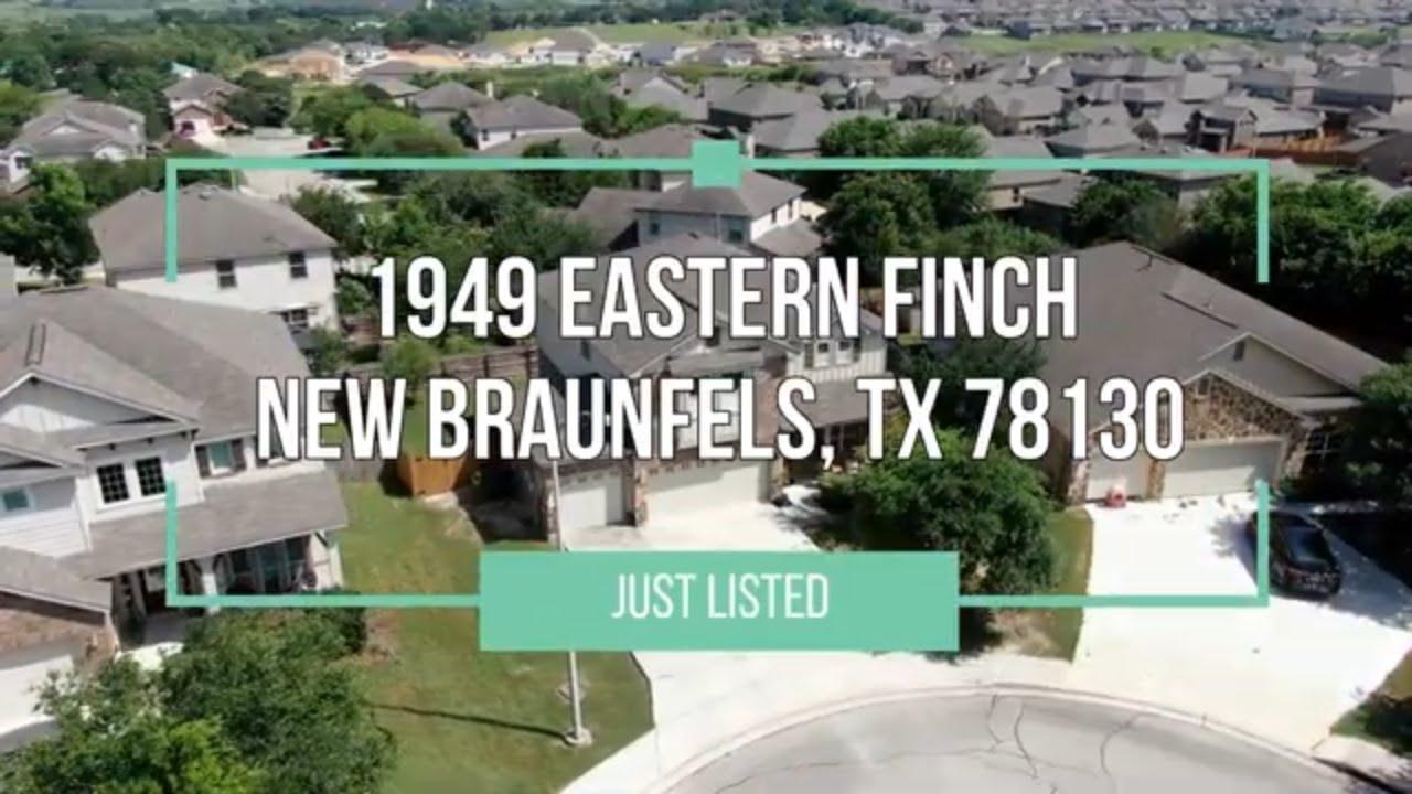 1949 Eastern Finch