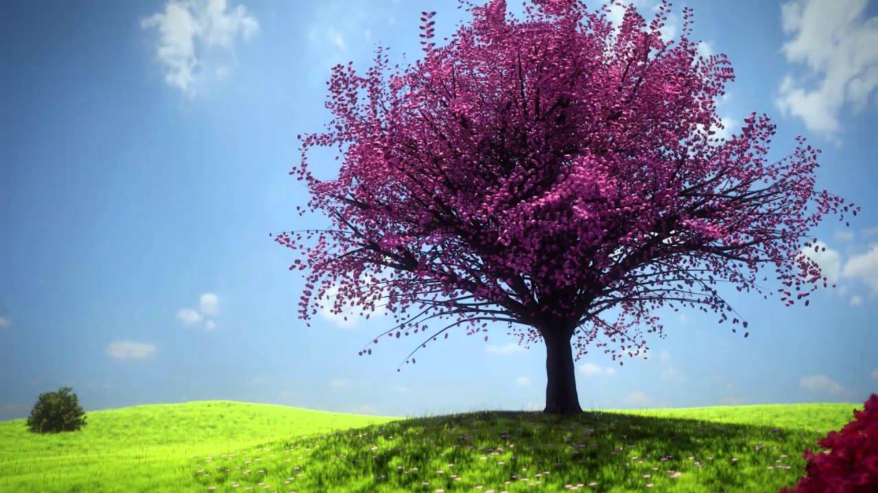 Charming Blender   Nature Landscapes   YouTube