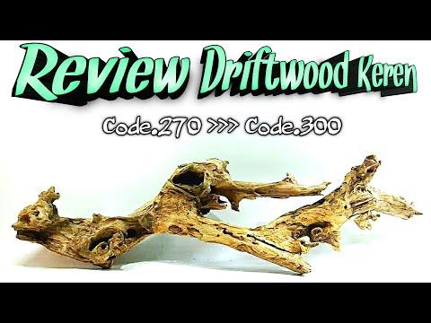 review-driftwood-for-aquascape---kayu-tua---kayu-rentek-untuk-aquascape