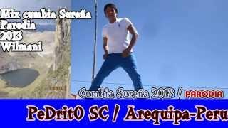 Mix Cumbia Sureña 2013 ♪♫ Primicias 2013-2014 ♪♫♪
