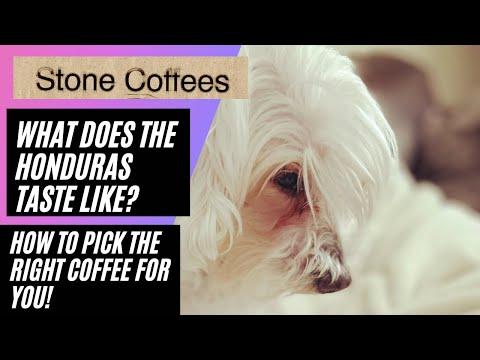 How do I choose the right coffee for me?! Stone Coffees Honduras single origin coffee review.