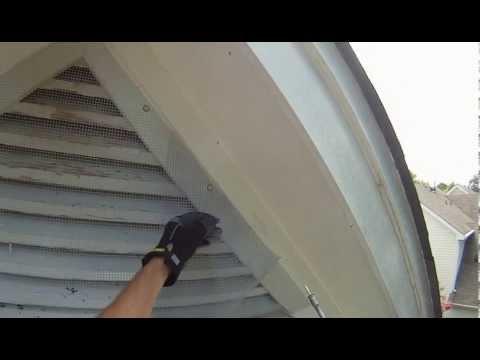 Bat Removal Using One Way Door