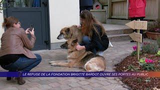 Yvelines | Le refuge de la fondation Brigitte Bardot ouvre ses portes au public