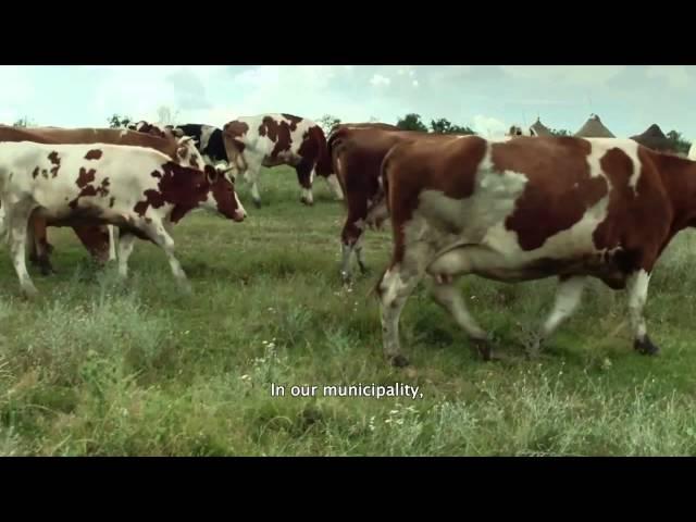 Land Grabbing (trailer)