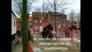 Ganzenrijders in Zandvliet.mp4
