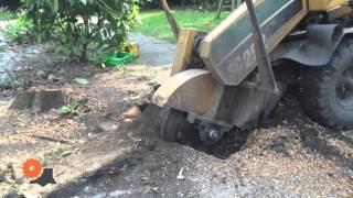 Op diepte verwijderen van een boomstronk met een stobbenfrees video.