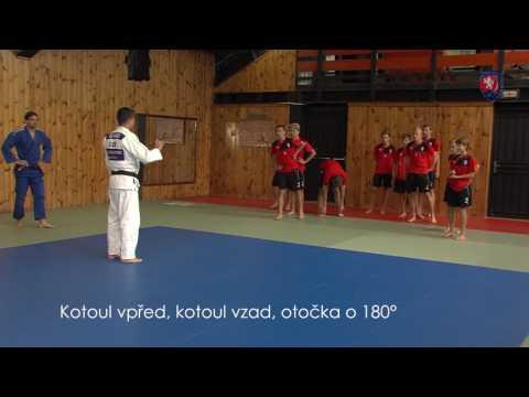 Judo jako doplněk kolektivních sportů