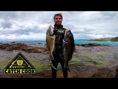 Spearfishing For Musselcracker And Spotted Grunter - Catch Cook - Glen Gariff, South Africa