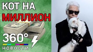 Карл Лагерфельд оставил миллионы своей любимой кошке Шупетт