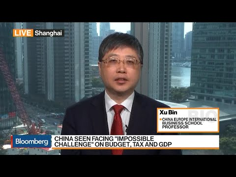 Professor Xu calls Consumption Key Driver of China's Economy