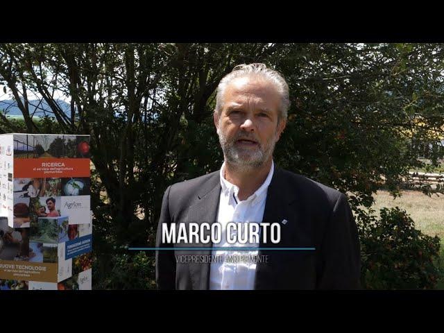 M. Curto: