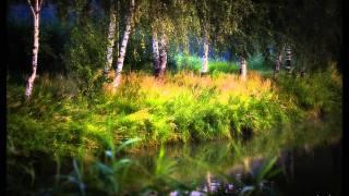 Fryderyk Chopin - Koncert Nr 1 e-moll, op. 11 - Romance. Larghetto; fortepian Rafał Blechacz