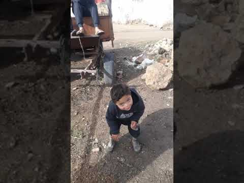 أخطر طفل على إيقاعات الشعبي 💣💣 thumbnail