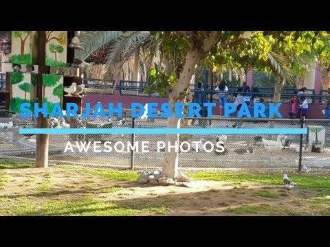 Sharjah Desert Park Images