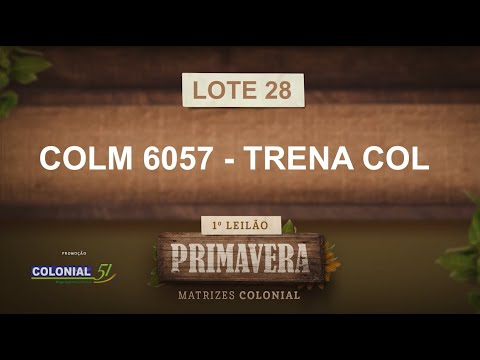 LOTE 28   COLM 6057
