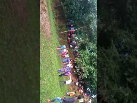 Elephant rescue in surguja Ambikapur