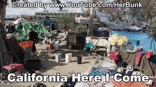 California Here I Come (Satire - Jesse Goldberg song)