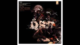 The Quantic Soul Orchestra -  The Conspirator