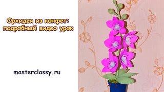 DIY. Sweet design: orchid tutorial. Орхидея из конфет: подробный видео урок