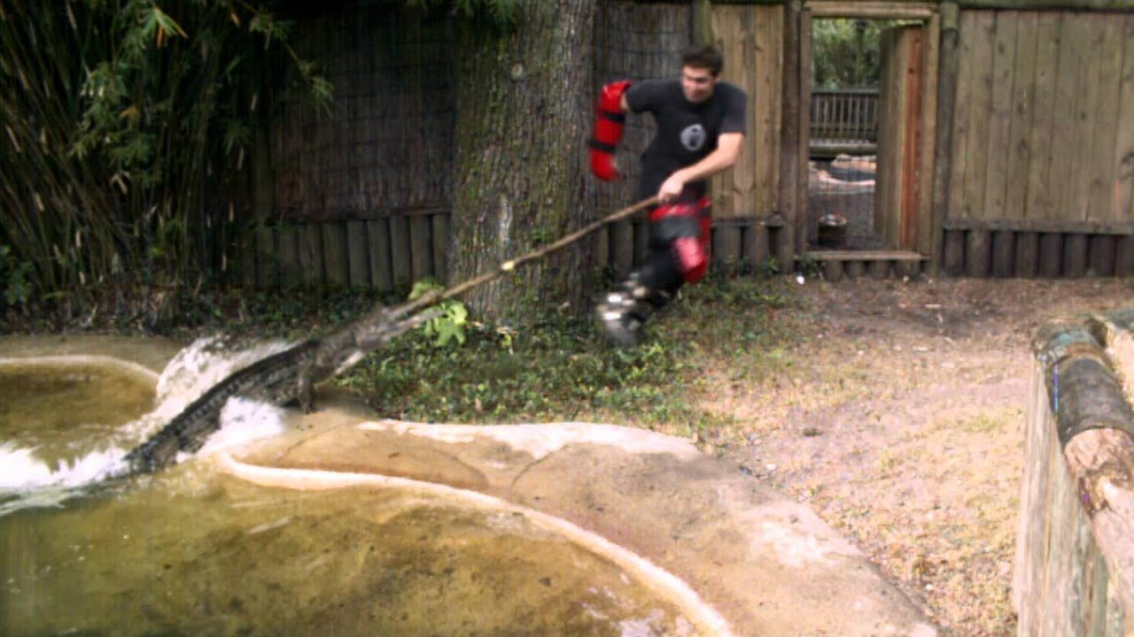 Season 11, Episode 10 Wet and Wild