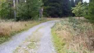 Wanderung von Ilsenburg zum Brocken am 27.9.2014