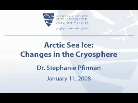 Arctic Sea Ice: Changes in the Cryosphere