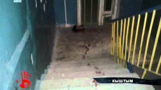 Мужчина жестоко убил собаку, которая укусила школьника
