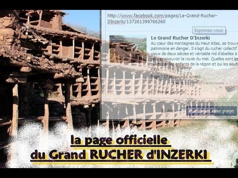 Inzerki : Le Grand Rucher collectif en danger.