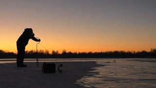 ЗЛАЯ ЩУКА Зимняя рыбалка на щуку Первый лёд 2020 2021 Зимняя рыбалка на жерлицы