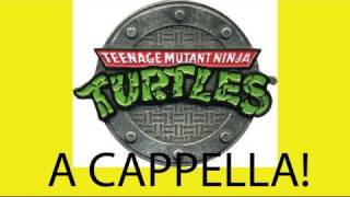 Teenage Mutant Ninja Turtles Theme Song - Danny Fong