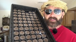 vuclip Learn How to Grow seeds indoors with Jiffy  Seed Starter Peat Pellets Tips on seed Germination
