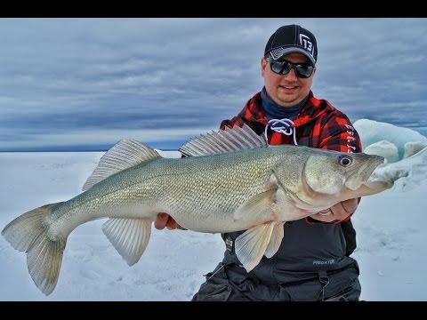 """Lake Winnipeg Greenbacks"" - FA TV Episode 9"