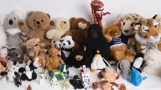 Мягкие игрушки. Львы, Леопард,  Котята, Скуби ду и Собачка лабрадор.
