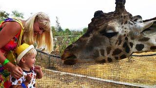 влог самый большой зоопарк фригия тунис видео про животных зоопарка #путешествия #животные