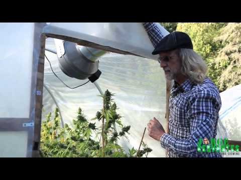 Small Green House Tour with Jorge Cervantes