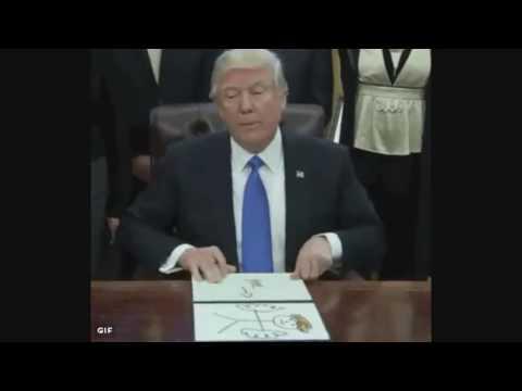 Trump Draws