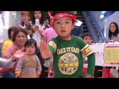 沖縄ゆんたく放送で人気がある子供達が踊る琉球舞踊カチャーシー編 犬たちにも人形にもカチャーシーを教えていますの巻