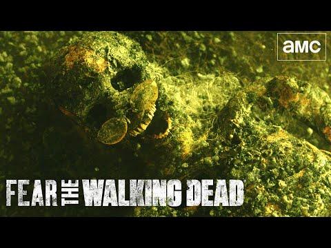 Fear the Walking Dead Season 7 Official Trailer | Premieres Oct 17 on AMC