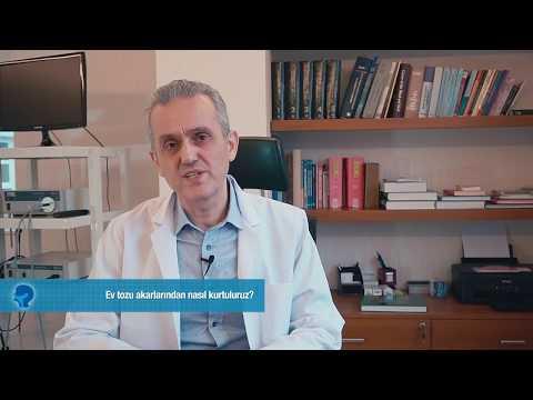 Ev tozu akarlarından nasıl kurtuluruz? | Prof. Dr. Erol EGELİ
