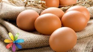 Выбираем курицу и яйца - Все буде добре - Выпуск 614 - 09.06.15