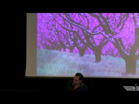 Essential Oils As Expressions Of Botanical Intelligence with David Crow, NAHA Conference Keynote